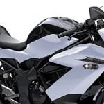 Target Kawasaki Ninja RR Mono sebesar 10 rebu per tahun,… strategy Kawasaki bumi hanguskan kompetitor single cylinder …???