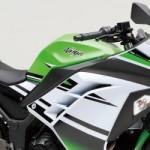 Dari data penjualan motor sportz fairing 250cc bulan Juli 2014,… perbandingan 30:1 … konsumen lebih memilih 2 cylinder …!!!