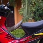 Kisah Juragan dengan motor,… ikut mendukung dakwah dengan Suzuki Shogun SP …!!! (11)