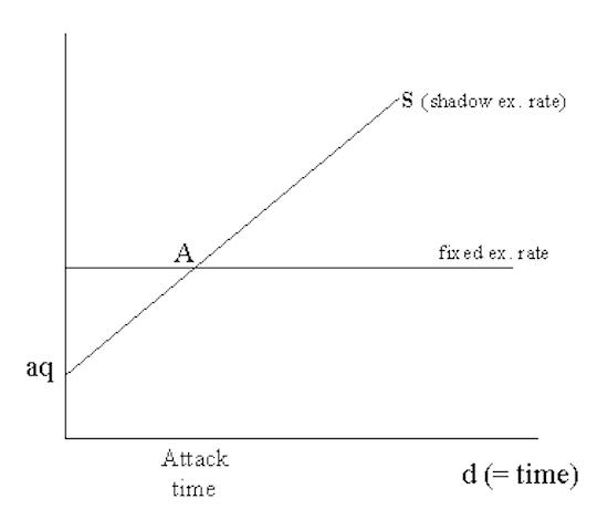 Shadow Exchange Rate